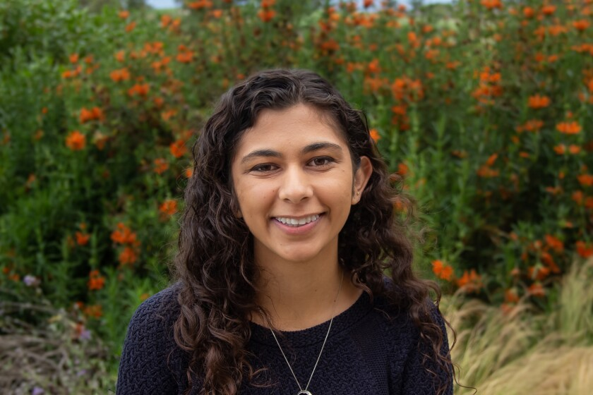 Sharada Saraf, an undergraduate intern in Kristian Andersen's lab at Scripps Research and a primary co-author of the study, painstakingly parsed data from numerous public health and travel sources.