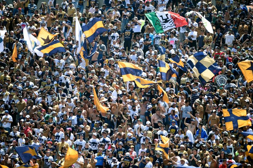 Pumas fans cheer during a Mexican Apertura 2019 tournament football match against Necaxa at the Olimpico Universitario stadium on July 28, 2019, in Mexico City. (Photo by ALFREDO ESTRELLA / AFP) (Photo credit should read ALFREDO ESTRELLA/AFP via Getty Images)