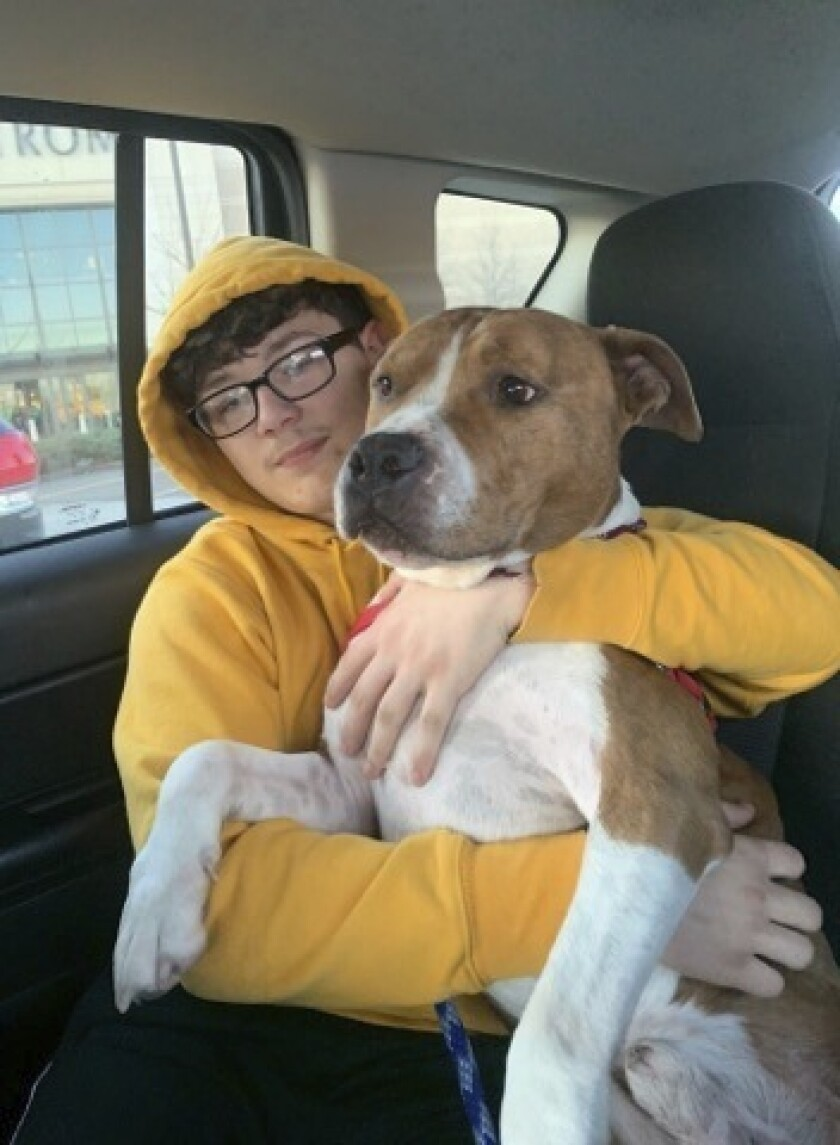 This photo provided by the Kanawha-Charleston Humane Association shows Zeus with a transport volunteer around St. Louis, Mo. Zeus, who was stolen from its owner in Montana and taken across the country to West Virginia, is on his way back home, thanks to a microchip and a group of volunteers who love animals. (Kanawha-Charleston Humane Association via AP)