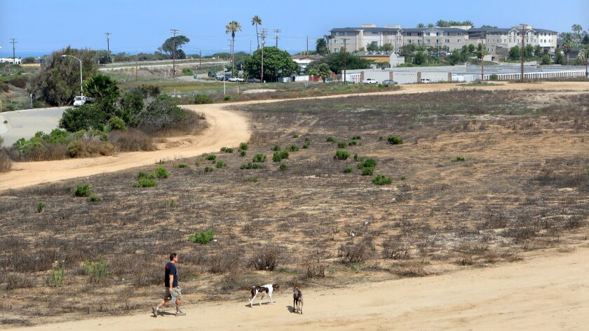 A man walks his dogs on land that could become part of the Ponto Beachfront development. In the distance at right is Hilton's upscale Cape Rey Resort.
