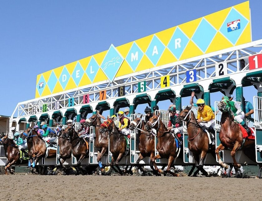 Ponies run July 16-Sept. 7 at the Del Mar racetrack.