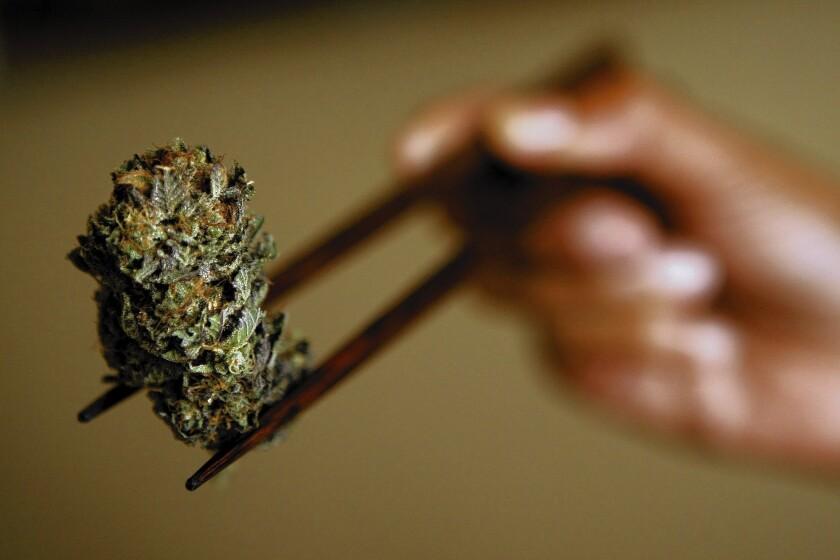 Greater use of marijuana