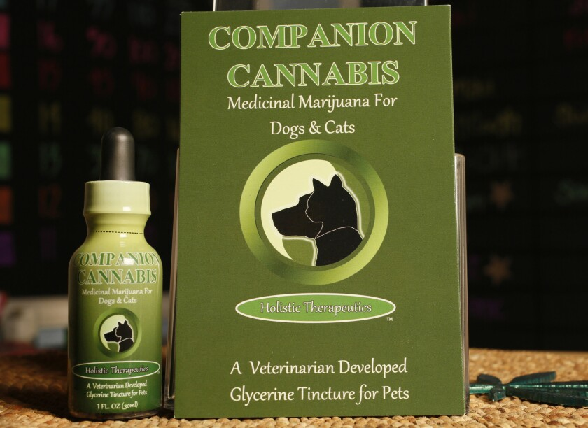 Companion Cannabis, a marijuana medicinal tincture for dogs and cats by Holistic Therapeutics, is displayed at La Brea Compassionate Caregivers in Los Angeles on May 30, 2013.