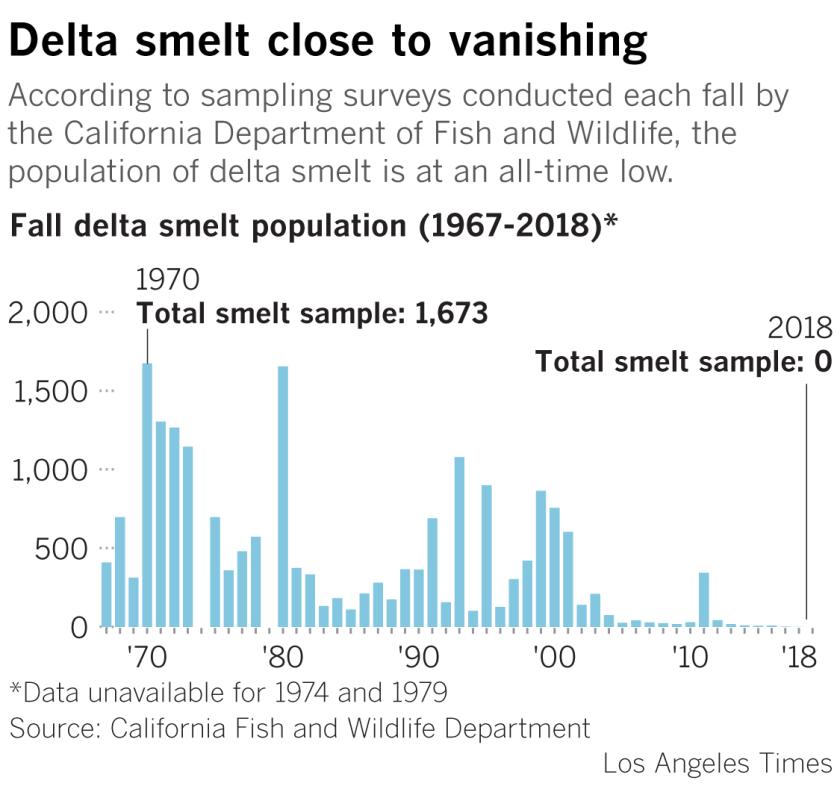 Delta smelt