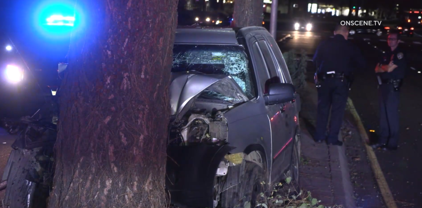 A driver was killed after slamming into a tree in Mira Mesa early Thursday morning, police said.