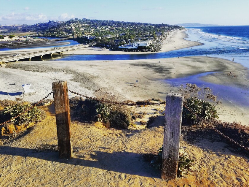 Talks are underway to reconsider how Del Mar manages Dog Beach and the 4.5-acre preserve above it.
