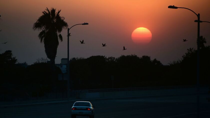 A land of perfect weather, California boasts a relentless sun that burnishes our dispositions and crisps the land.