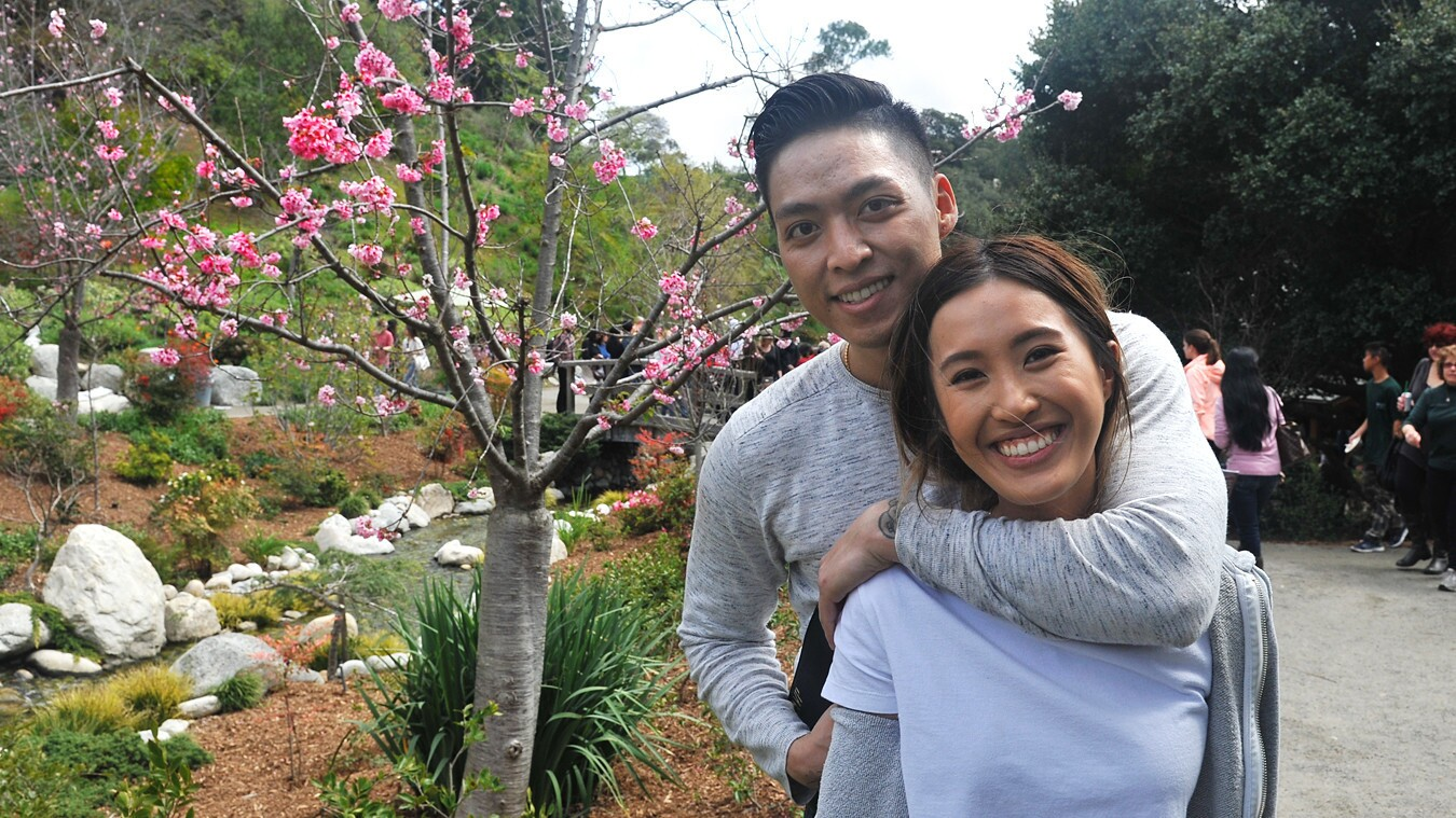 Visitors at the famed Cherry Blossom Festival in Balboa Park were treated to Japanese street foods, cultural performances and, of course, blooming cherry trees on Sunday, March 11, 2018.