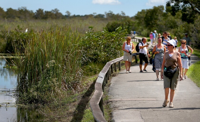 The Everglades National Park is on UNESCO's List of World Heritage in Danger. Here, visitors return to the park after it was closed to visitors for 16 days during a partial government shutdown in October.