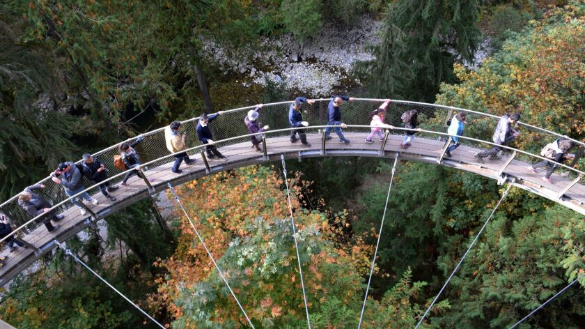 VANCOUVER, CANADA - Visitors enjoy the Canyon Lookout at Capilano Suspension Bridge Park in Vancouve