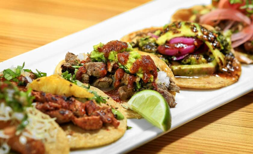 Petty Cash Taqueria offers the basics, such as al pastor or a taco with roasted crickets.