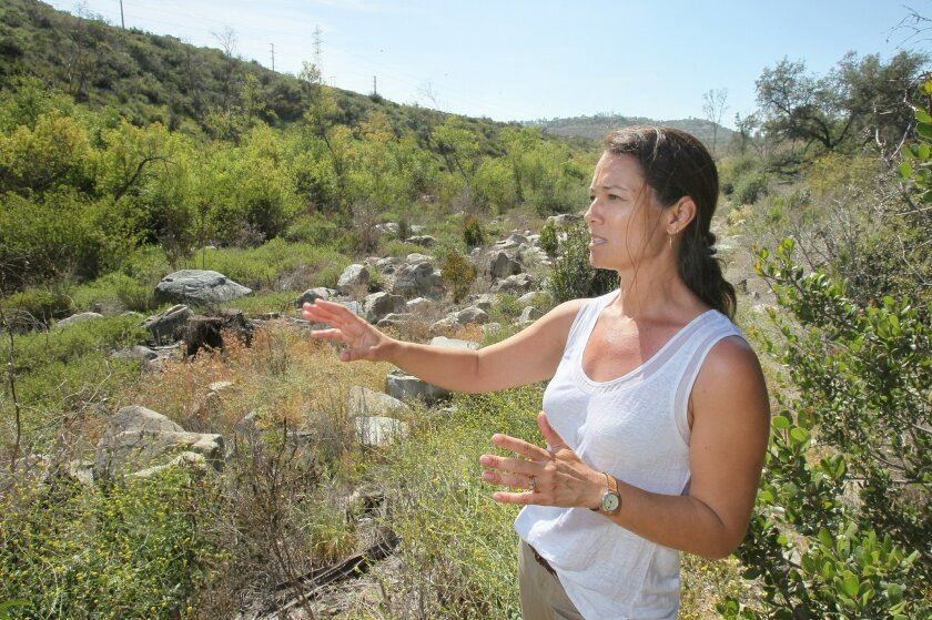 Shea O'Keefe, a biologist with the Natural Resources Conservation Service, stands in the habitat restoration area near the San Dieguito River and Rancho Santa Fe. Eucalyptus trees and other non-native plants have been removed so native plants can return. The effort will help the  endangered Southw
