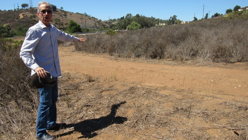Skyline Church Executive Pastor Dan Grant looks over open space where the megachurch wants to build a senior retirement center in this file photo from 2018.