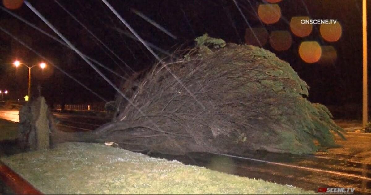 カリフォルニアの野生の冬の始まるドキドキ、雨竜巻警報、大雪