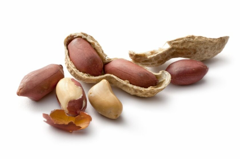Kids with peanut allergies saw their symptoms improve after gradually increasing their exposure to peanut protein over six months, according to the results of a clinical trial.