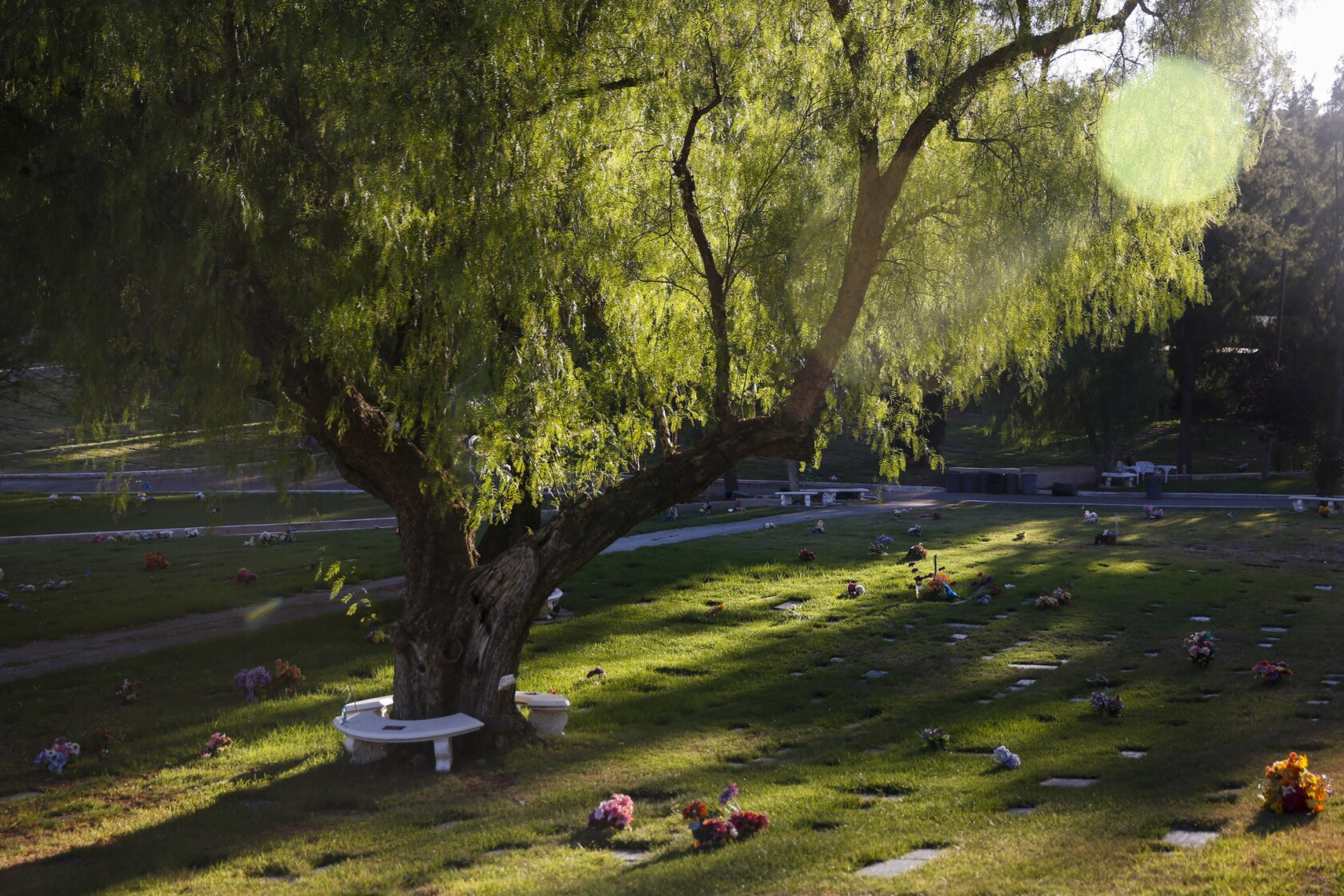 At L A  pet cemetery, an often-misunderstood grief is
