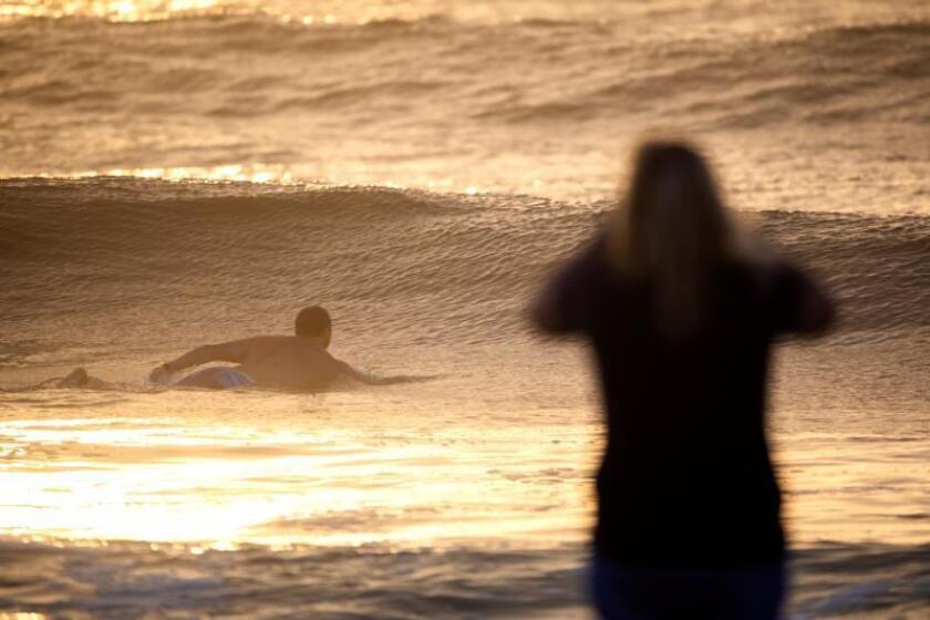 """En la playa de New Smyrna un tiburón atacó el sábado 27 de julio a Willian Angel, un turista de 49 años, cuando tomaba olas con una tabla (""""bodyboading""""). EFE/David Arquimbau/Archivo. EFE/ Jim Lo Scalzo"""