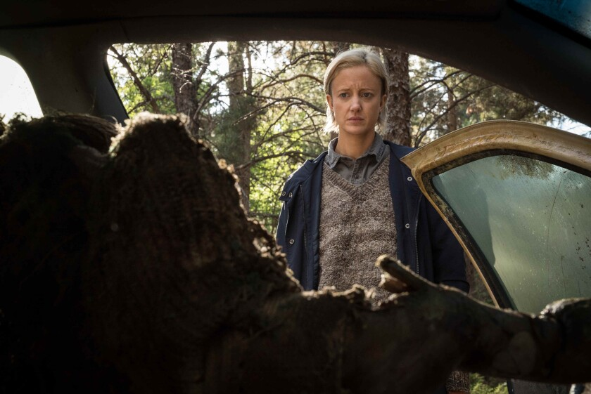 Andrea Riseborough in the movie 'The Grudge'