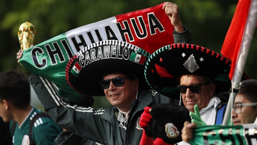 A Mexico fan wearing a tradition Mexican hat, cheers as his team, the Mexico national soccer team, b