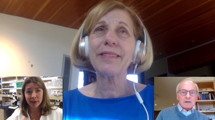 La Jolla resident and District 1 San Diego City Council member Barbara Bry (center) asks coronavirus questions to Erica Ollmann Saphire of La Jolla Institute for Immunology, and pulmonary-disease specialist Thomas Martin, via the Zoom app on March 30, 2020.