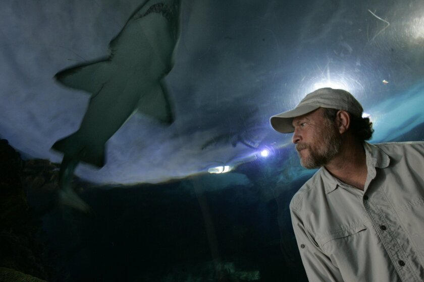 Brent Stewart, a senior research scientist at Hubbs-SeaWorld Research Institute on Mission Bay, is being honored by the international Explorers Club for his contributions to science.