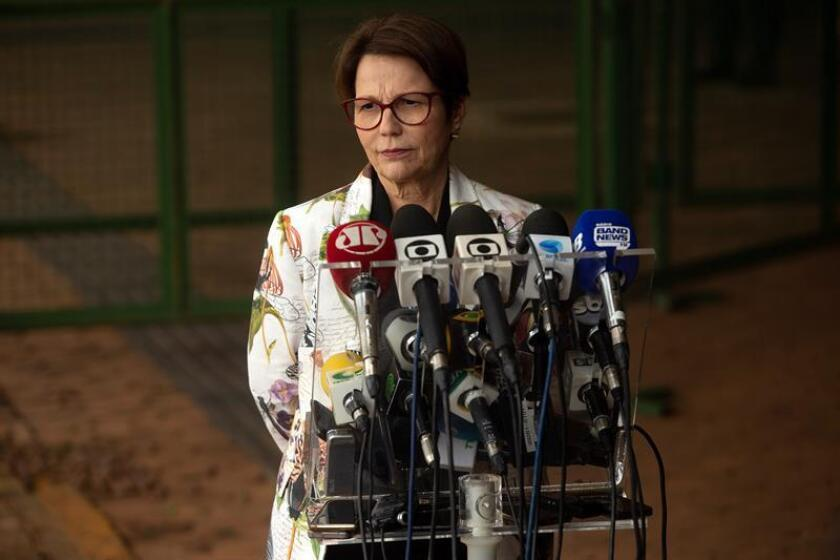 Brazilian future Agriculture Minister Tereza Cristina da Costa delivers a press conference in Brasilia, Brazil, Nov. 8, 2018. EPA-EFE/Joedson Alves