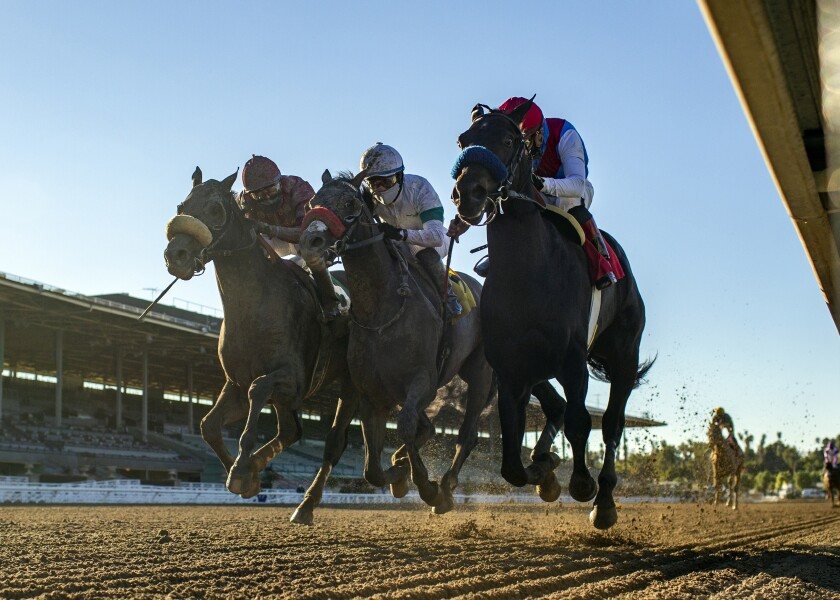 Medina Spirit holds off Roman Centurian and Hot Rod Charlie to win the Robert B. Lewis Stakes.