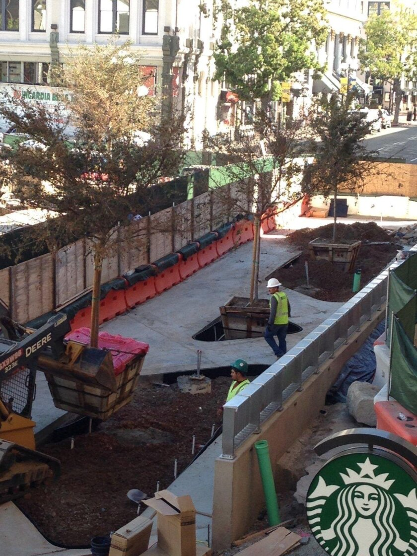 Workers maneuver a new tree into place on the south side of the expanded Horton Plaza park, just north of the Balboa Theater.