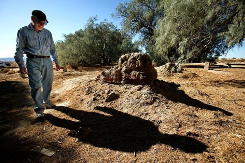 Al Gartner of the 29 Palms Historical Society inspects the remains of an adobe house at the Poste Homestead Natural and Historic Area. Preservationists say the area was damaged by off-road vehicle enthusiasts over the Thanksgiving weekend.