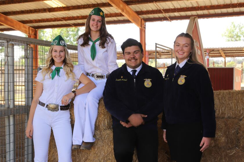 Ramona Junior Fair Scholarship winners: From left, Makenna Blackburn, Kylie Konyn, Dakotah Audibert and Adelaide Sorbo.