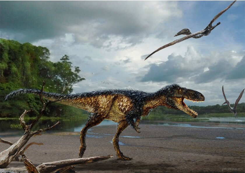 Timurlengia euotica, a horse-sized primitive tyrannosaurid, roamed the Earth during the Middle Cretaceous (about 90 to 92 million years ago) in Uzbekistan.