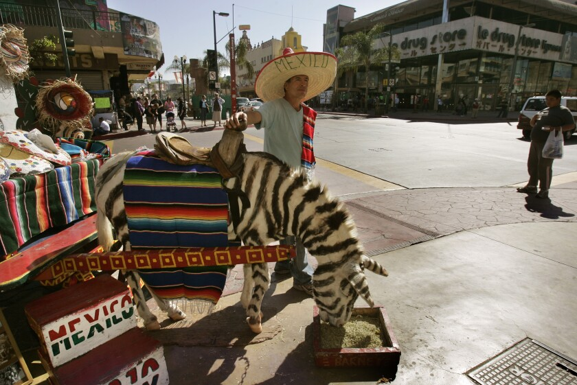 Eduardo Perez waits for tourists with his burro named Barney, painted like a zebra, on Avenida Revolución in Tijuana. The burro cart photo-op tradition dates back to the 1930s.