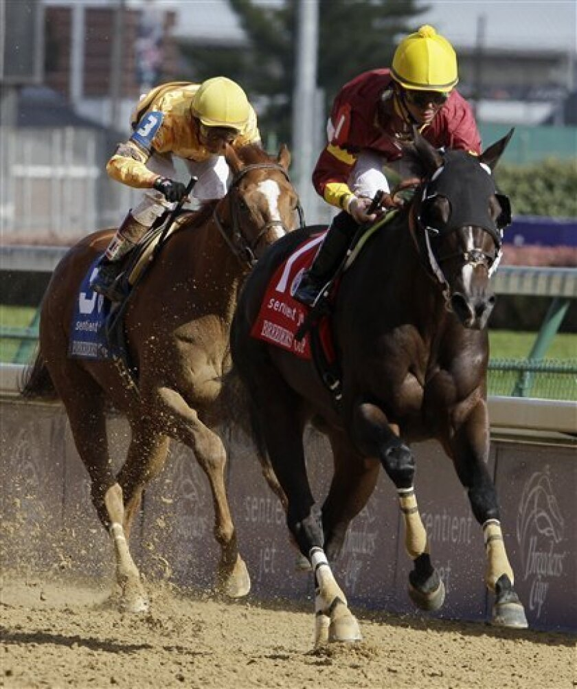 Eibar Coa (1) rides Big Drama to victory during the Sprint race at the Breeder's Cup horse races at Churchill Downs Saturday, Nov. 6, 2010, in Louisville, Ky.(AP Photo/Darron Cummings)
