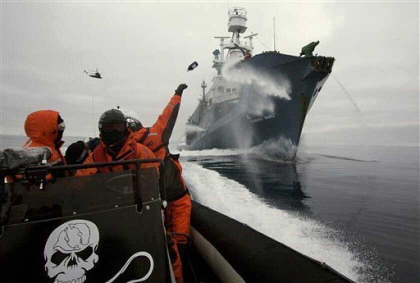 In this image provided by the Sea Shepherd Conservation Society a whaling protestor throws a bottle of butyric acid (rotten butter) at the Japanese harpoon whaling ship Yushin Maru No. 1 in the Antarctic Ocean, Monday, Feb. 2, 2009, as the Sea Shepherd helicopter flies overhead. Japanese whalers used a water cannon to blast radical conservationists during the clash in frigid Antarctic waters. (AP Photo/Sea Shepherd Conservation Society, Adam Lau, HO)