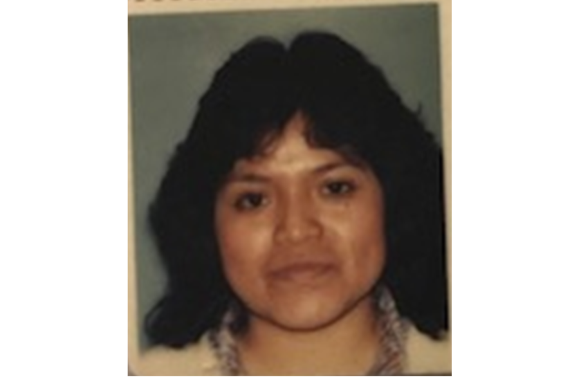 Julia Hernandez Santiago