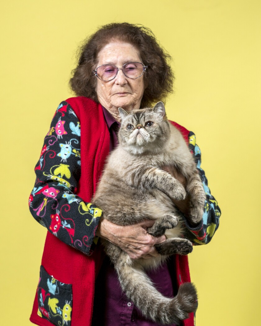 Joan Stewart holds her Exotic breed cat named Rocky.