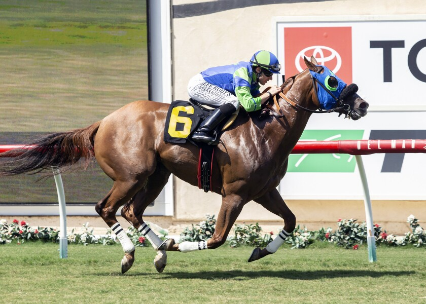 Mr Vargas (6), with Joseph Talamo aboard, wins the Grade III, $100,000 Green Flash Handicap horse race on Saturday at Del Mar Thoroughbred Club.