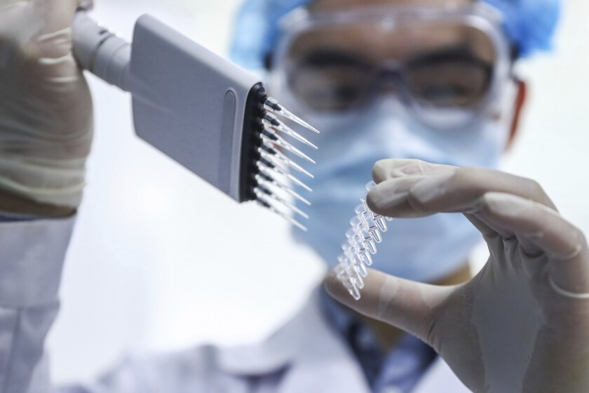 A staff member is testing samples of a potential vaccine at SinoPharm in Beijing, in the race to manufacture a vaccine against the coronavirus.