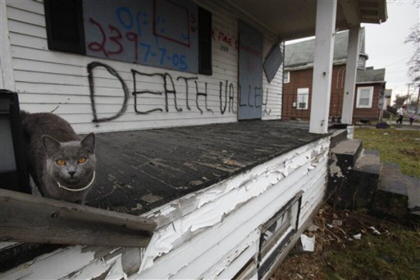A cat takes shelter from the rain on a porch of a vacant home marked for demolition on Burgard Place in Buffalo, N.Y., Friday, April 3, 2009. There are as many as 10,000 vacant, abandoned homes in Buffalo as suburban sprawl, an aging population and manufacturing losses have left the city with under 300,000 inhabitants, about half what it was during the 1950s. (AP Photo/David Duprey)