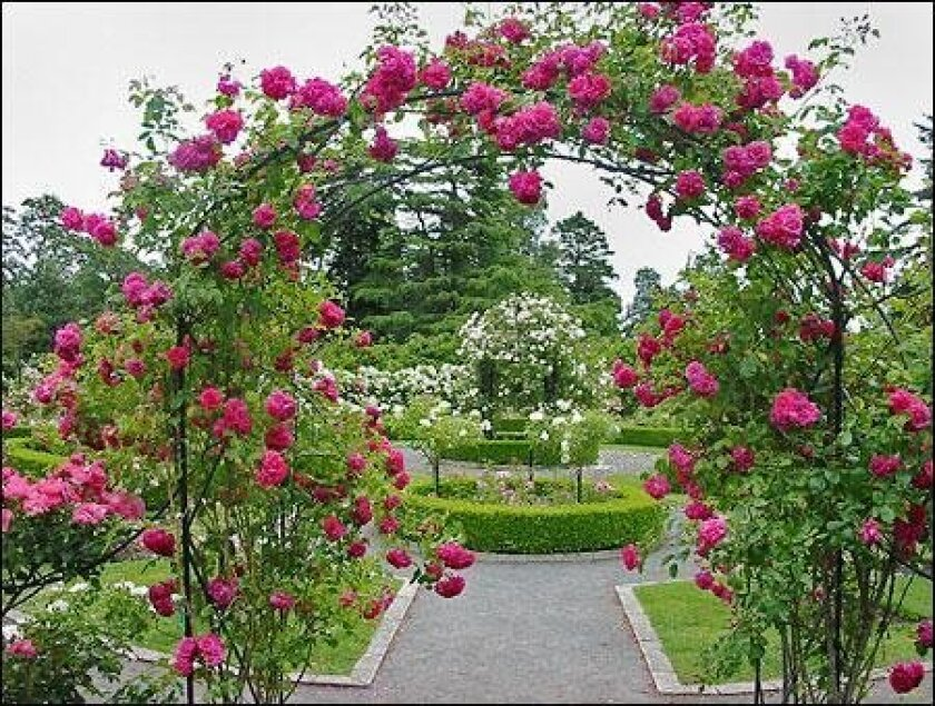 Secret Garden Tour Saturday, May 14 10 a.m. to 4 p.m. From Wisteria Cottage