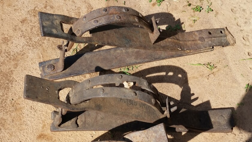 An example of snares used by poachers to trap wildlife in Uganda's Murchison Falls National Park.