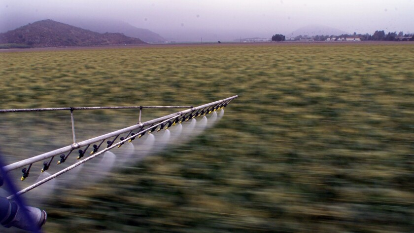 A helicopter applies pesticide to a field in Ventura County.