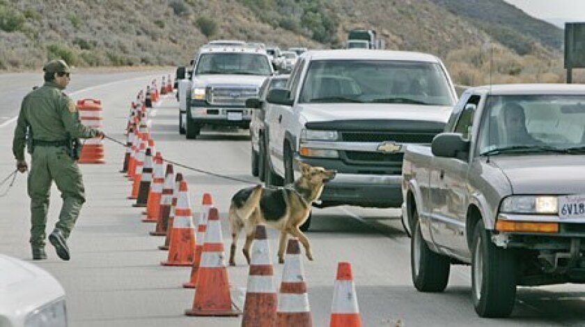 A Border Patrol agent and his dog at a checkpoint in Pine Valley on Thursday. (Peggy Peattie / Union-Tribune)