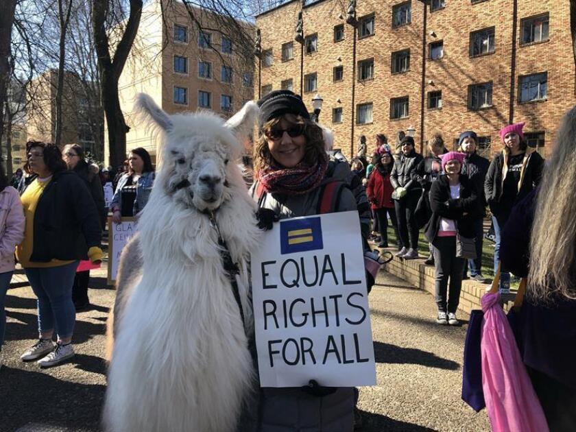 """Una mujer sosteniendo un cartel posa con la llama Caesar durante su participación el pasado domingo 3 de marzo en la marcha por la mujer, """"the womxn march"""", en Portland, Orgeón (EE.UU.). EFE"""