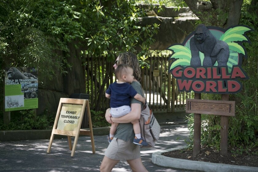 A visitor with a small child passes outside the shuttered Gorilla World exhibit at the Cincinnati Zoo & Botanical Garden, Sunday, May 29, 2016, in Cincinnati. On Saturday, a special zoo response team shot and killed Harambe, a 17-year-old gorilla, that grabbed and dragged a 4-year-old boy who fell