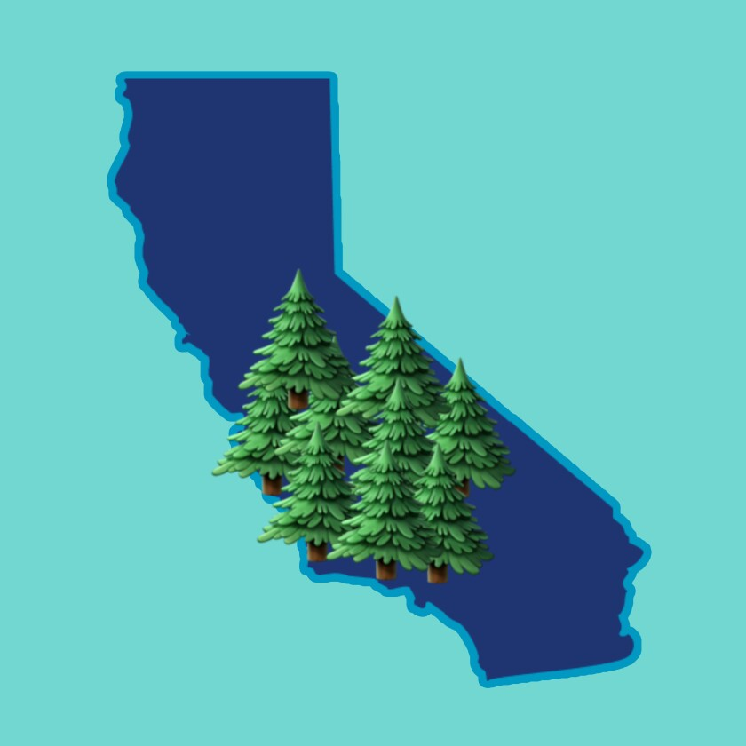Graphic of trees on top of a cutout of California