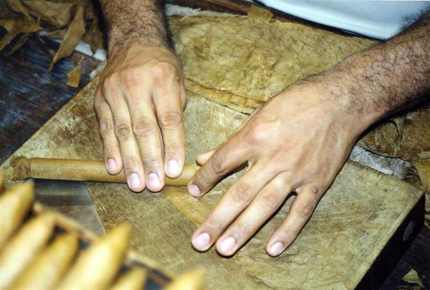 """Con toda una vida dedicada a la elaboración artesanal de tabaco, Wallace Reyes no le da más de """"quince o veinte"""" años de existencia a una industria que ha marcado la historia de la ciudad de Tampa (EE.UU.), en la costa oeste de Florida y que llegó a ser llamada la """"capital mundial del puro"""". EFE/ARCHIVO"""