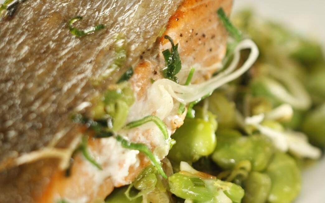 Sockeye salmon with green garlic and favas