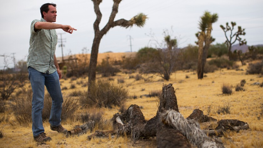 Frazier Haney, conservation director at Mojave Desert Land Trust, stands on land adjacent to the Institute of Mentalphysics.