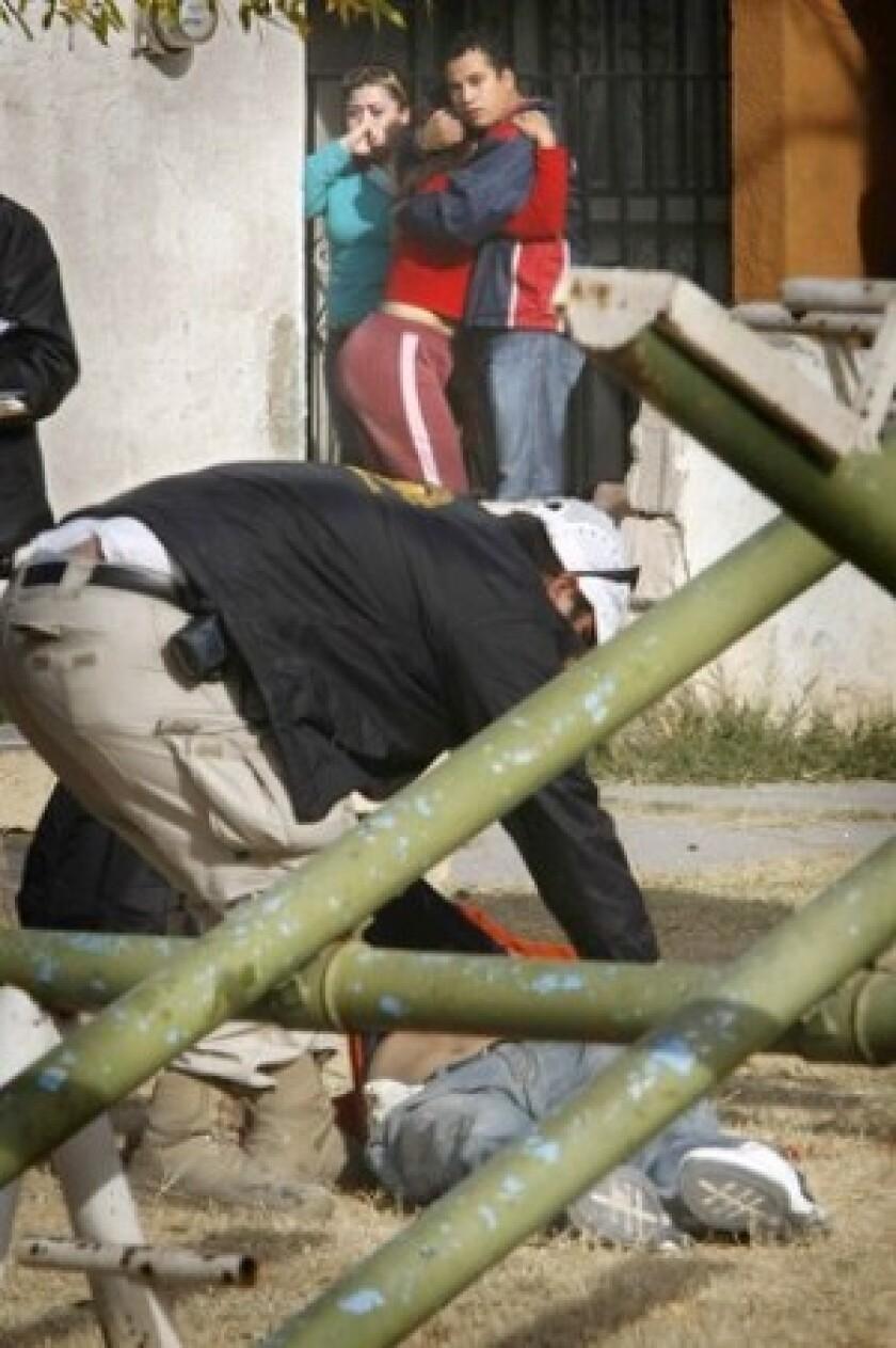 Mexico's drug war